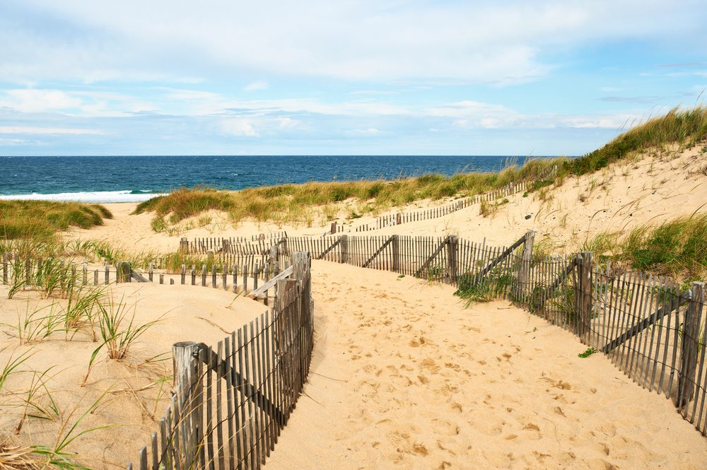 Falling In (Love With) Cape Cod